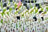 Memorial Day, 2013 :