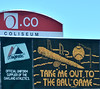 Take Me Out to the Ballgame! :