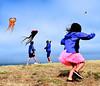 Berkeley Kite Festival, 2013 :