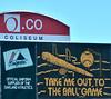 Take Me Out to the Ballgame! :